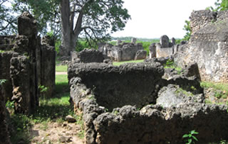 tanga-wonders-tongoni-ruins